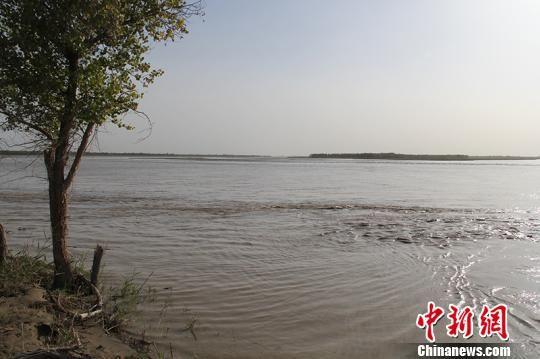 三河汇聚的塔里木河源头风景秀美,气候宜人。 戚亚平 摄