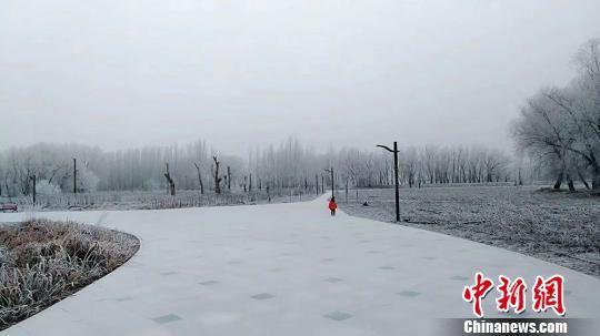 团场被积雪覆盖,银装素裹。 杨东东 摄