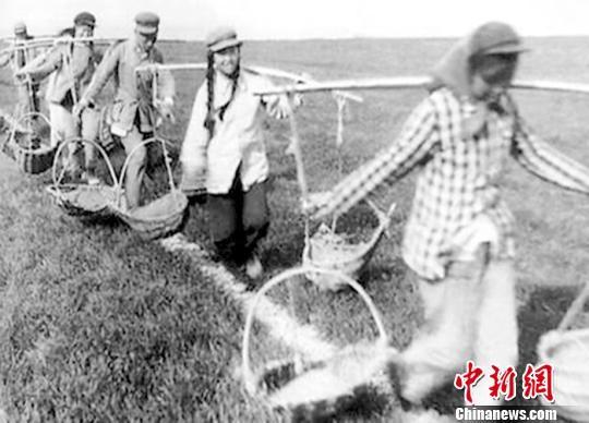 20世纪50年代初到60年代末,新疆兵团农场农事主要靠坎土曼、扁担和柳条筐这些简单的工具完成。(翻拍资料片) 易名 摄