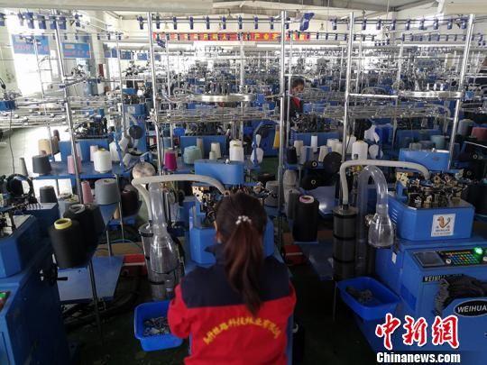 衢州市援疆指挥部引进制袜企业落户乌什县,生产车间里工人们紧张忙碌着。 王小军 摄