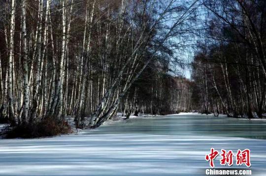 哈巴河的冬日之美丝毫不输夏天。 哈巴河县委宣传部供图 摄