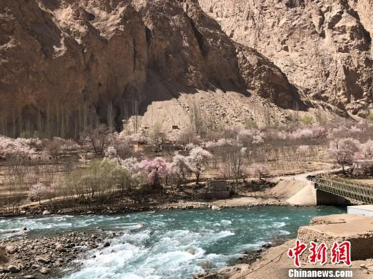 4月3日,杏花�_遍山谷溪�。 勉征 �z