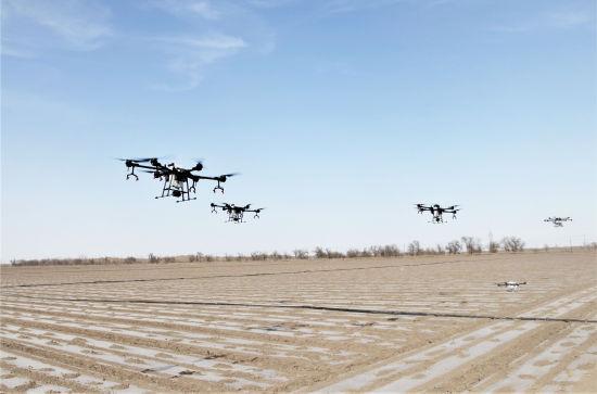2019年4月9日,植保无人机在八师一五�团农田作业。胡杨网资料图片