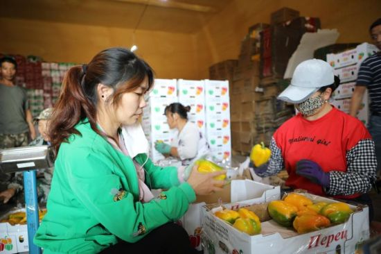 8月23日,永盛物流公司仓储基地员工在检验待出口的彩椒。