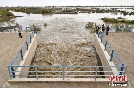 8月25日,新疆南部塔里木河中下游,河道上的生态闸口正在向周边的胡杨林送水。中新社记者 刘新 摄