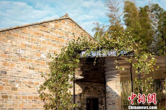 """中国建筑师王彦,将夏木塘村内一座90年历史的旧宅改建为咖啡厅,取名""""夏虫咖啡""""。主办方供资料图"""