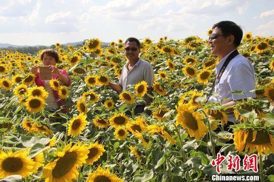 一八五团观光农业吸引游客。 杨东东 摄