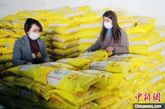 温宿县哈拉苏农产品农民专业合作社工作人员统计大米数量。 颜寿林 摄