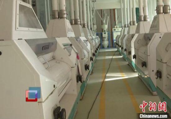 二二二团阜北麦客制粉有限公司做好正式复工复产准备。 安媛杰 摄