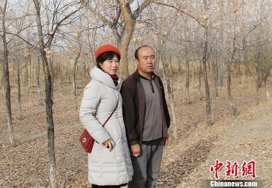 海外华媒走进新疆兵团 被护林员的故事深深打动