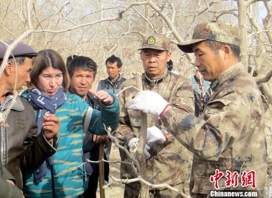 """新疆兵团职工驻村做""""红娘""""帮助村民脱贫(图)"""