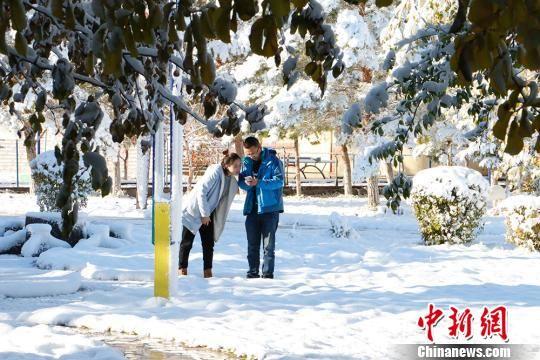 新疆兵团边境团场迎入秋来首场强降雪 雪后美景如画