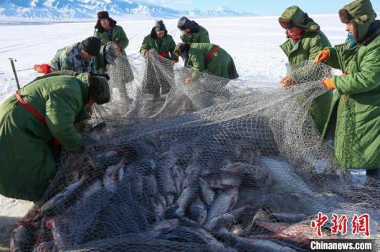 新疆东天山传统冬捕民俗开启