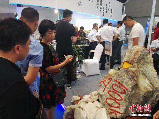 新疆且末一吨重和田玉亮相第五届中国—亚欧博览会