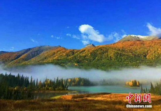 新疆喀纳斯深秋风景美如画