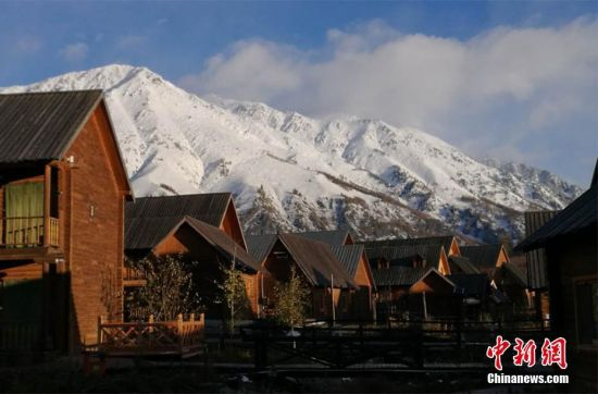 新疆喀纳斯景区迎降雪 游客体验白雪映衬下秋的魅力