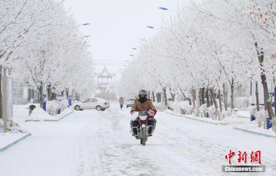 新疆兵团边境团场现雾凇景观 宛如置身童话世界