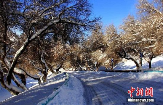 """新疆天池景区强降雪后变""""银色大道"""""""
