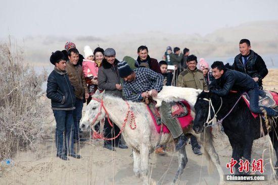 新疆且末县农民玩滑冰、刁羊、斗鸡等活动迎接新年