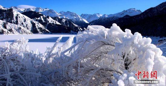 新疆天山天池雾淞美景迷人
