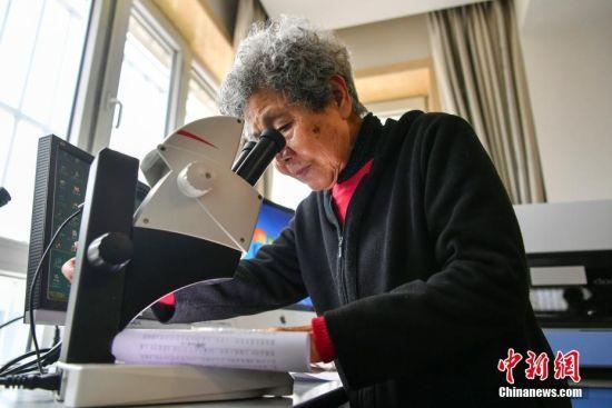 """新疆""""奶奶级""""文痕鉴定专家 83岁仍坚守工作岗位"""