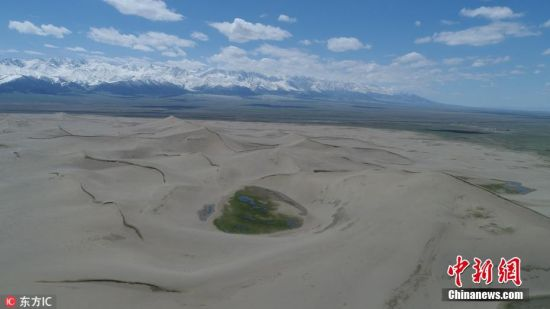 新疆哈密神奇鸣沙山 外有草原围内有沙棘林