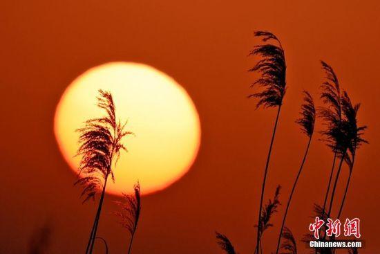 新疆克拉玛依夕阳映满天