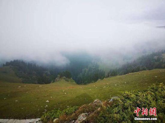 新疆那拉提草原秋色渐浓 云雾缭绕美如画