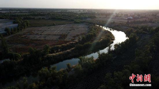 航拍新疆孔雀河两岸生态屏障