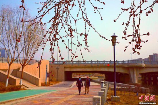 新疆南部迎来初春艳阳天 民众生活步入正常轨道