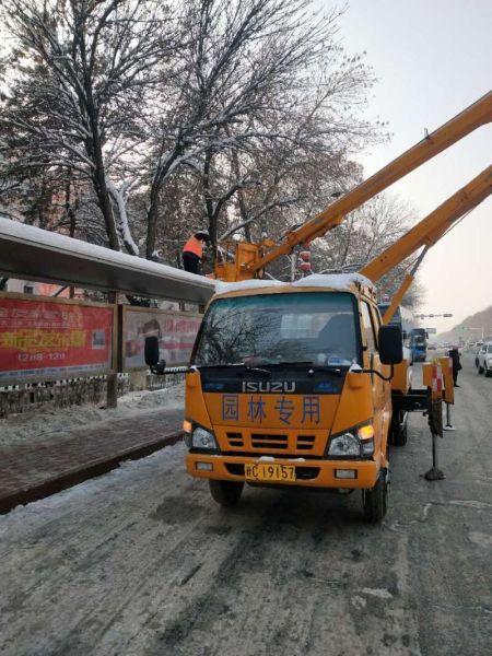 石河子市�@林�G化�B�o中心清理公交�站亭�e雪助力��城