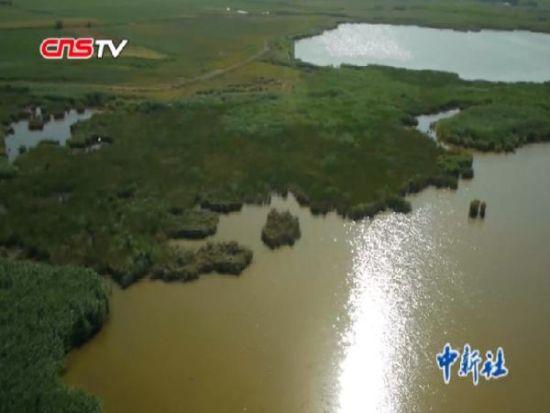 """新疆玛纳斯湿地公园晋升""""国家级""""湿地公园"""