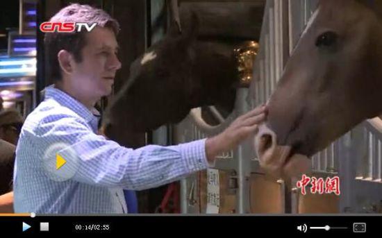 胡润:中国马产业发展需要创新模式