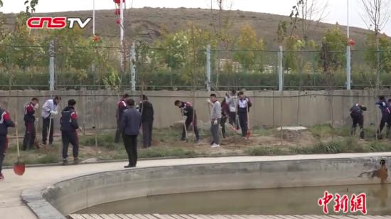 新疆修改义务植树条例每人至少3颗树 师生点赞