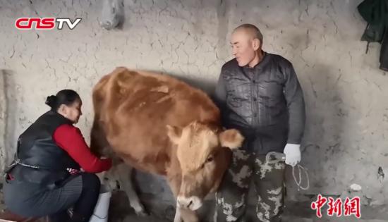 工作队帮牧民销鲜牛奶供两大学生 学费有着落