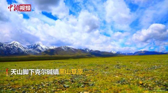 新疆黑山草原:雪山与绿野交相辉映