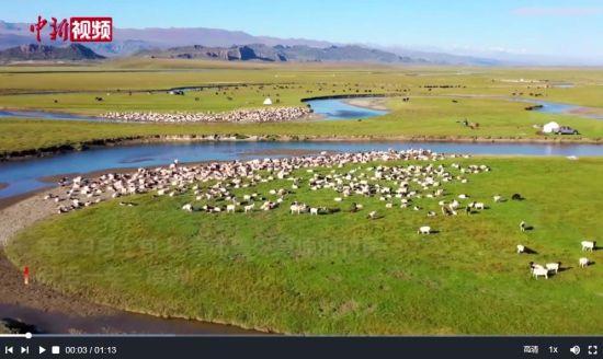 新疆巴音布鲁克草原一百余万头牲畜展开秋季转场