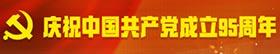 庆祝中国共产党成立95周年