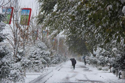 冷空气入侵第四师七十七团场迎来入冬首场大雪