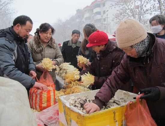 第八师一四三团徐峰利用农闲季节培育食用菌实现增收