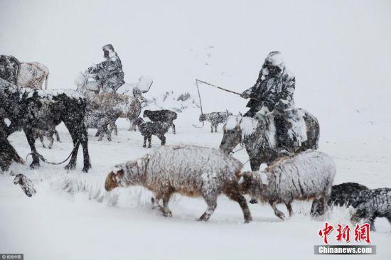 新疆阿勒泰现强降雪天气 交通出行受阻