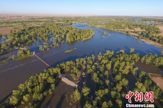航拍新疆额尔齐斯河汛期