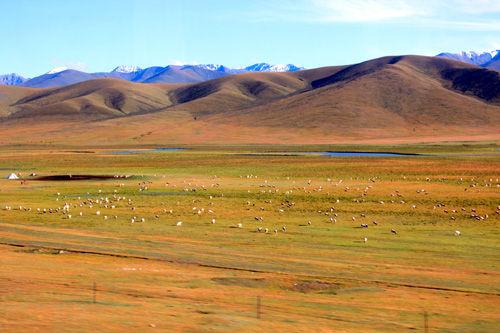 新疆巴音布鲁克草原秋色迷人