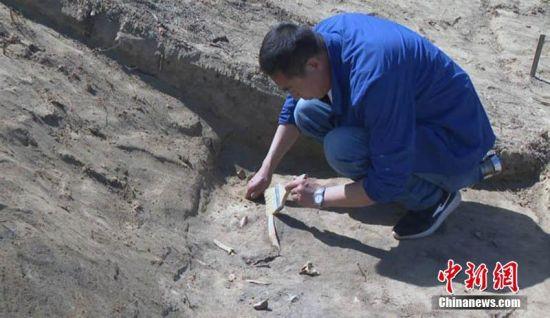 新疆吉木萨尔县北庭故城遗址考古发掘发现唐代文物