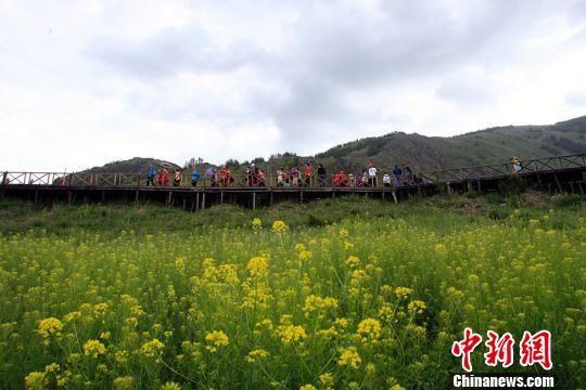"""黑龙江游客走进新疆阿勒泰""""明星""""景区感受北疆风光"""