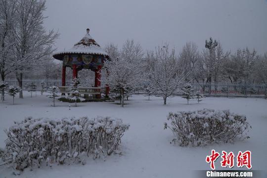 新疆兵团边境团场雪后景色美如画