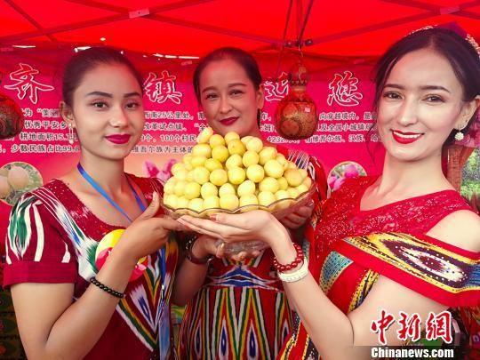 新疆库车举办小白杏节 64种杏子让游人大开眼界