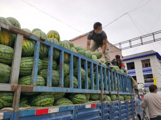 昭苏县为困难群众赠送100吨西瓜