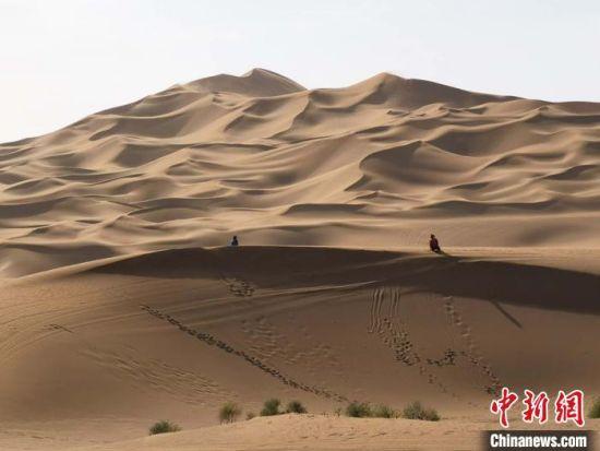 新疆库木塔格沙漠景区恢复跨省旅游 独特沙漠美景吸引游人