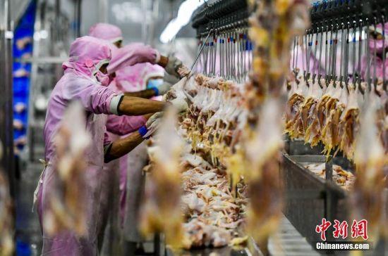 大型肉类加工企业落户新疆墨玉 可提供岗位近6000个